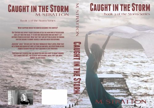 Caught in the Storm full cover
