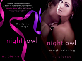 Night Owl Paperback and ebook Cover resize